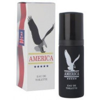 America (Mens 50ml EDT) Milton Lloyd